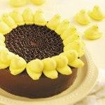Peeps Sunflower Cake - tasteofhome.com
