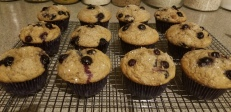 Whole Wheat Blueberry Muffins 2